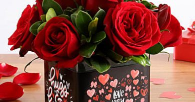 Red roses- Looking for Gifts-The Best and Amazing Bouquets for a Special One